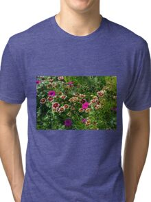Beautiful colorful flowers in the garden. Tri-blend T-Shirt