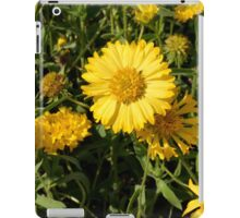 Yellow flowers in the grass. iPad Case/Skin
