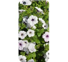 White spring flowers in the park. iPhone Case/Skin
