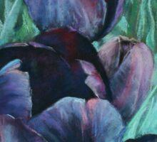 Black Tulips Sticker