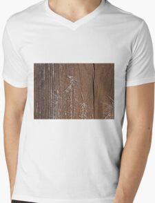 Frost on Shed Door Mens V-Neck T-Shirt