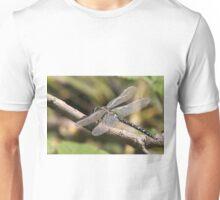 Aeshna juncea - Common Hawker Unisex T-Shirt