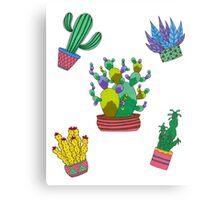 Cactus folie Canvas Print