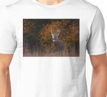 Early fall rut - White-tailed Deer Unisex T-Shirt