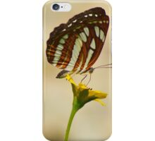 Common Sailor Butterfly, India. iPhone Case/Skin