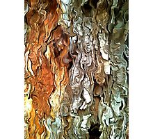 Abstract Faces in Nature Photographic Print