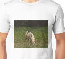 Piapiac on Ram Unisex T-Shirt