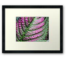 Iridescent Colorful Leaf Framed Print