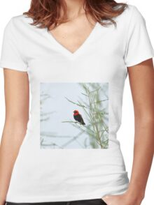 Black-winged Red Bishop Women's Fitted V-Neck T-Shirt