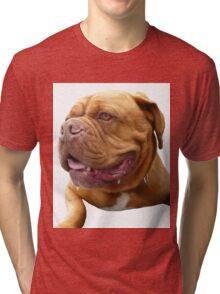French Mastiff Tri-blend T-Shirt