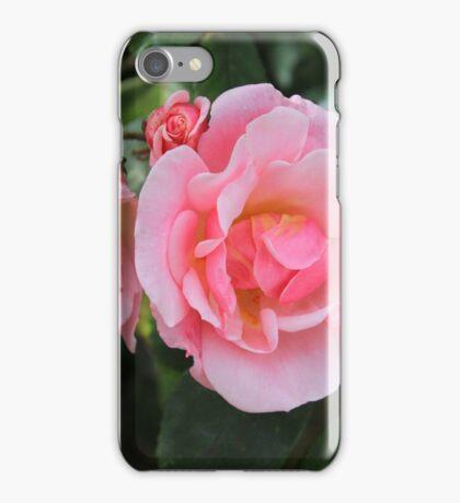 Pink Rose Bush iPhone Case/Skin