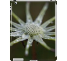Then There Were None iPad Case/Skin