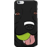 Black Lab with Ball  iPhone Case/Skin