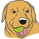 Yellow Lab with Ball by rmcbuckeye
