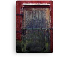 Motley Decay Canvas Print