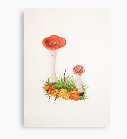 Fly Agaric Canvas Print