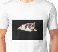 Grumpy Cat on Black Background Unisex T-Shirt