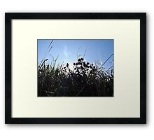 Glowing Fluff Framed Print