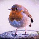 Photo art robin redbreast in the snow by Hugh McKean