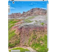 Winding Dry River iPad Case/Skin
