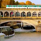 Sunny autumn on the Seine - Bercy Bridge, Paris by bubblehex08