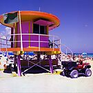 Pink Lifeguard Stand by Bill Wetmore