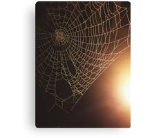 Spiders Not Included Canvas Print