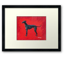 Black Greyhound Framed Print