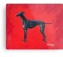 Black Greyhound Metal Print