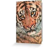 Tiger portrait 884 Greeting Card
