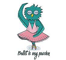 Owl ballerina Photographic Print