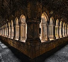 Quin Abbey Cloisters by Derek Smyth