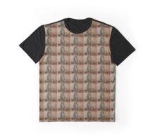 Dragon Age Inquisition- Abelas  Graphic T-Shirt