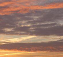 Sunset pastels Sticker