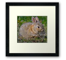 Grumpy Bunny -   Anytime Cute Framed Print