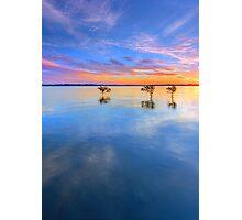 3 Trees - Wellington Point Qld Australia Photographic Print