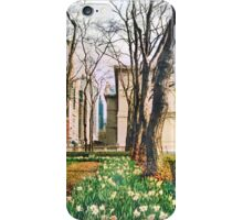 Urban Beauty iPhone Case/Skin