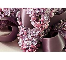 Lilac And Ribbon Curls Photographic Print