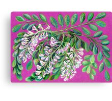 Wisteria white  Canvas Print