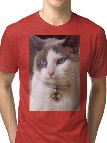 Cute but Spoiled Tri-blend T-Shirt