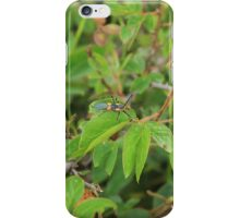 Orange and Black Insect on a Leaf iPhone Case/Skin