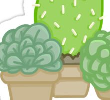 Cactus! Sticker