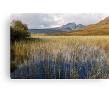 Blaven and the Reeds of Loch Cill Chriosd Canvas Print
