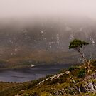 Dove Lake by Werner Padarin