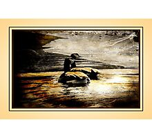 Mother and Father Canada Geese Photographic Print