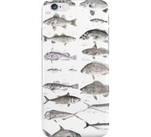 Fish Collection iPhone Case/Skin