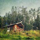 Robert Service Cabin  by Priska Wettstein
