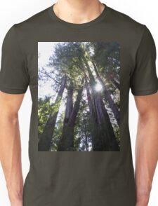 Henry Cowell Redwoods 03.05.2015 836 Unisex T-Shirt