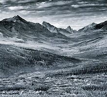 North Klondike River Valley  by Priska Wettstein