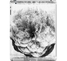 Crackled - BW iPad Case/Skin